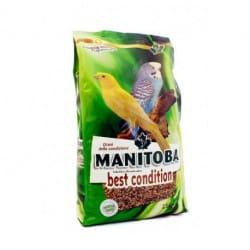 Manitoba Best Condition-alimento complementare per uccellini