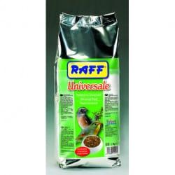 Raff Universale pastone universale per uccelli insettivori