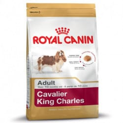 Royal Canin Cavalier King Charles Adult alimento secco per cani