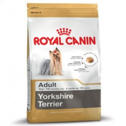 Royal Canin Yorkshire Terrier Adult alimento secco per cani