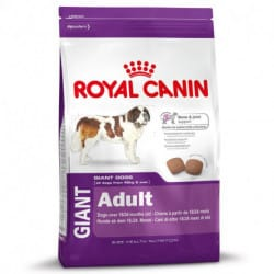 Royal Canin Giant Adult alimento secco per cani