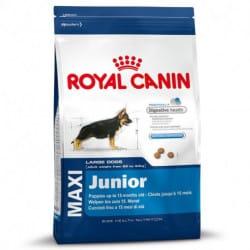Royal Canin Maxi Puppy alimento secco per cani