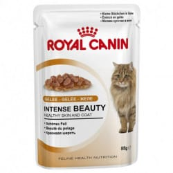 Royal Canin Intense Beauty alimento umido per gatti