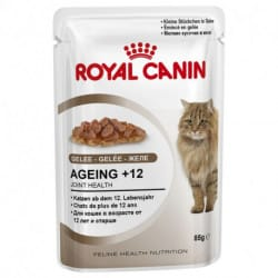 Royal Canin Ageing +12 alimento umido per gatti